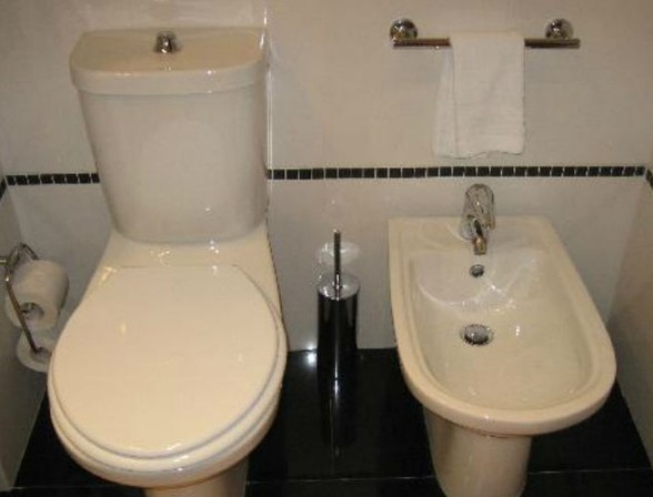 Have You Ever Wondered How To Use A Bidet?